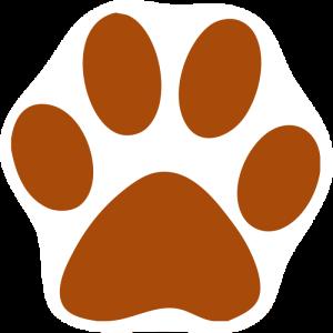copper paw